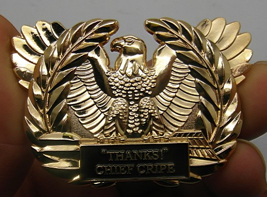 Custom Designed Challenge Coins Free Shipping! Fast Service